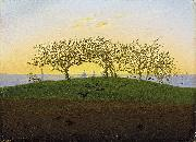 Caspar David Friedrich Hill and Ploughed Field near Dresden painting