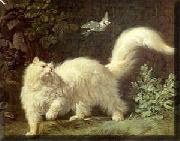 Jean-Jacques Bachelier Un chat Angora oil painting