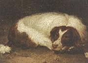 Johann Christoph Rincklake A sporting dog lying down oil on canvas