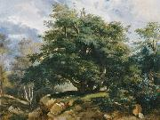 Jules Coignet Old Oak in the Forest of Fontainebleau oil on canvas
