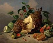 Mota, Jose de la Still life with fruit oil painting reproduction