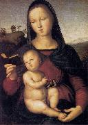 RAFFAELLO Sanzio Solly Madonna oil painting reproduction