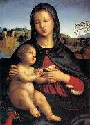 RAFFAELLO Sanzio Madonna and Child oil painting reproduction