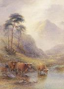 unknow artist Highland cattle in a stream painting