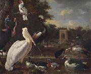unknow artist A Pelican and other exotic birds in a park china oil painting reproduction