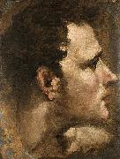 Domenico Beccafumi Head of a Youth Seen in Profile painting