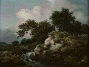 Jacob Isaacksz. van Ruisdael Landscape with Dune and Small Waterfall oil