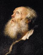 Jan lievens Study of an Old Man oil on canvas