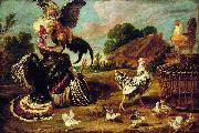 Paul de Vos The fight between a turkey and a rooster china oil painting artist
