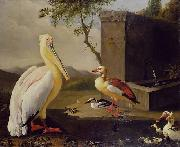 Adriaen Coorte Pelican and ducks in a mountain landscape or Oriental Birds oil on canvas