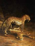 Jacques-Laurent Agasse Two Leopards Lying in the Exeter oil painting reproduction