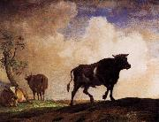 paulus potter The Bull china oil painting artist
