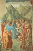 MASACCIO The Baptism of the Neophytes china oil painting artist