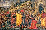 Parentino, Bernardo The Adoration of the Magi oil painting reproduction