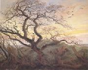 Caspar David Friedrich Tree with Crows Tumulus(or Huhnengrab) beside the Baltic Sea with Rugen Island in the Distance (mk05) oil painting reproduction