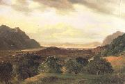 Alexandre Calame The Rhone Valley at Bex with a View to the Lake of Geneva (nn02) oil on canvas