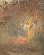 Emile Claus Tree in the Sun (nn02) oil on canvas