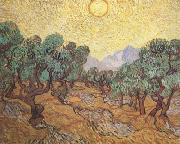 Vincent Van Gogh Olive Trees with Yellow Sky and Sun (nn04) painting