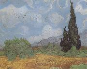 Vincent Van Gogh Wheat Field with Cypresses (nn04) oil painting reproduction