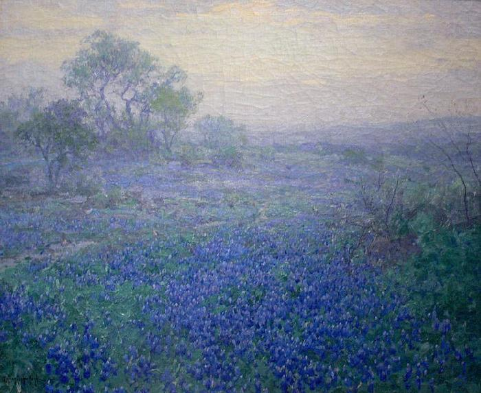 Julian Onderdonk Cloudy Day. Bluebonnets near San Antonio, Texas china oil painting image