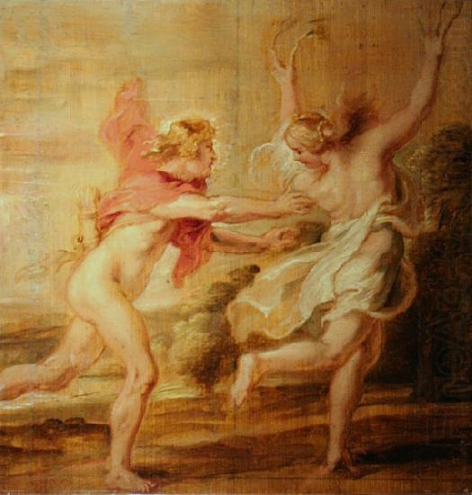 apollo and daphne painting essay