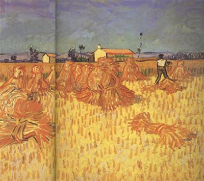 Vincent Van Gogh Harvest in Provence (nn04) china oil painting image