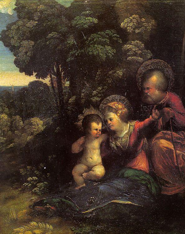 The Rest on the Flight into Egypt_4, Dosso Dossi
