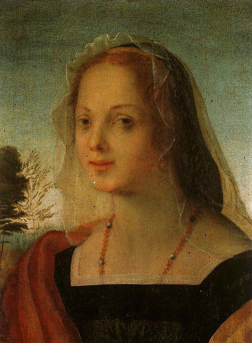 Portrait of a Young Woman, Rosso Fiorentino