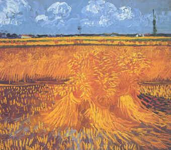 Wheatfields With Cypress at Arles, Vincent Van Gogh