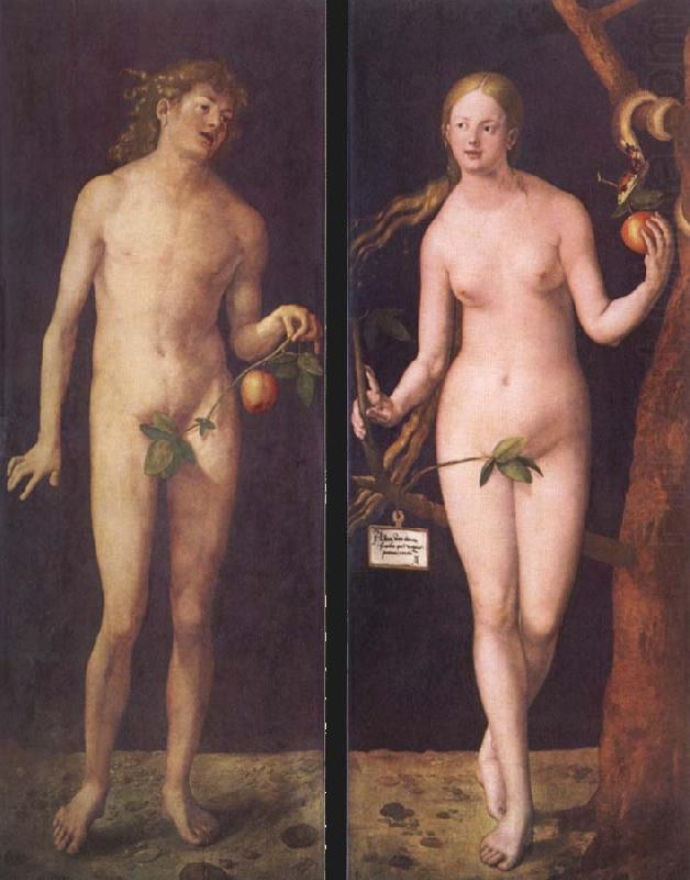 Albrecht Durer Adam And Eve 1507 Adam And Eve Albrecht Durer