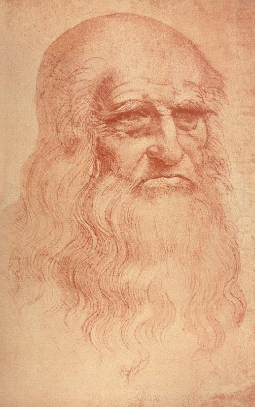 Leonardo Da Vinci Self Portrait Of Himself Self Portrait LEONARDO...