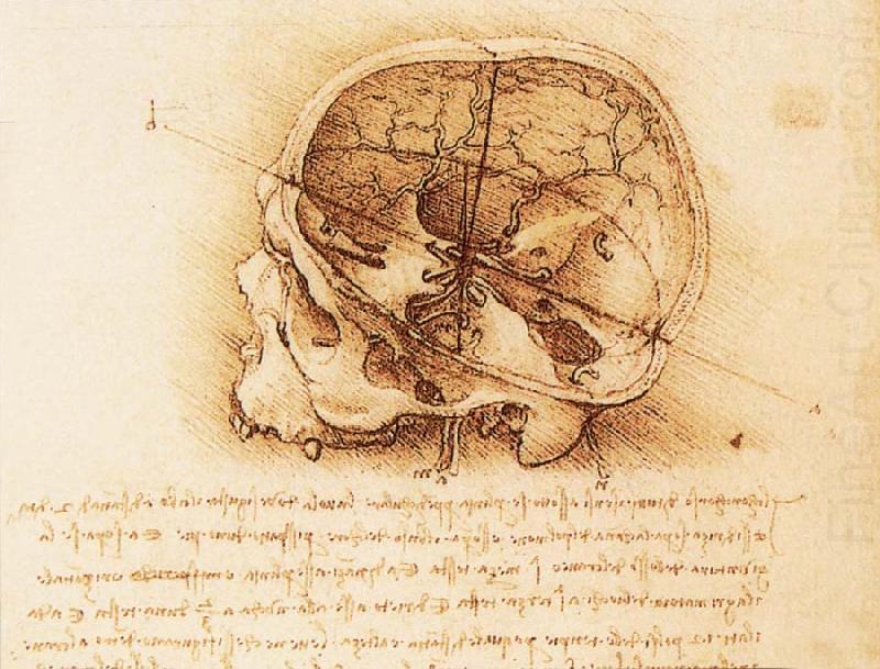 LEONARDO da Vinci-977447.jpg