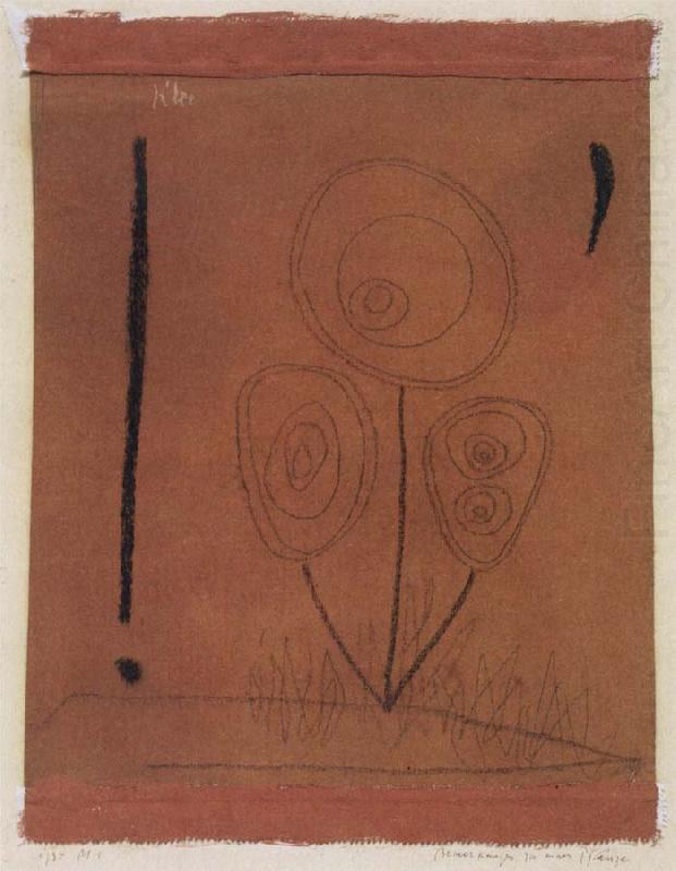 Paul Klee Remarks concerning a plant