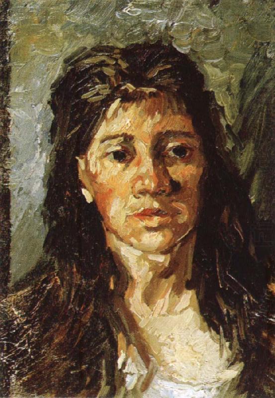 van gogh portrait woman. Study of Portrait of woman,