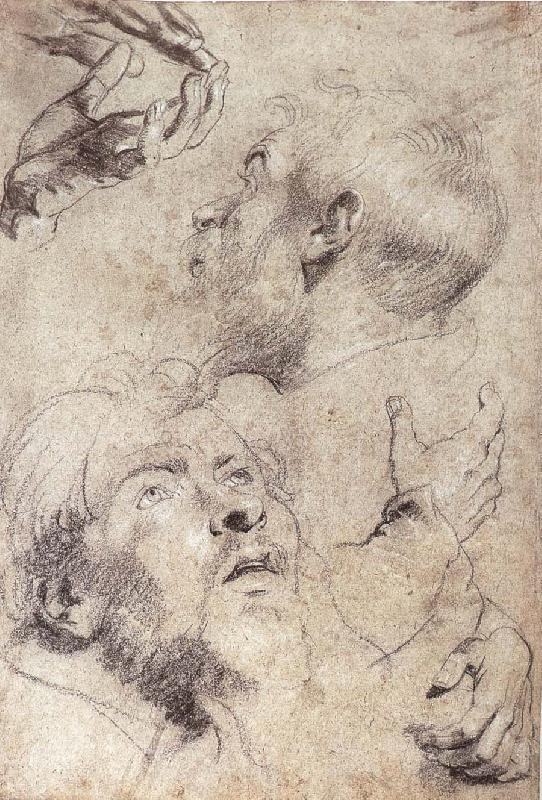 Four hand and two man-s head portrait, Peter Paul Rubens