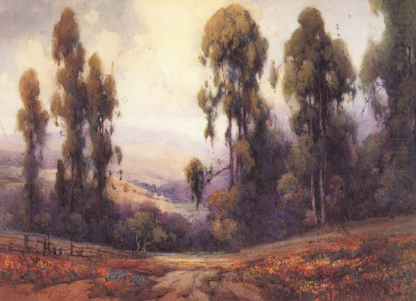 Path to the Blue Mountains, Percy Gray