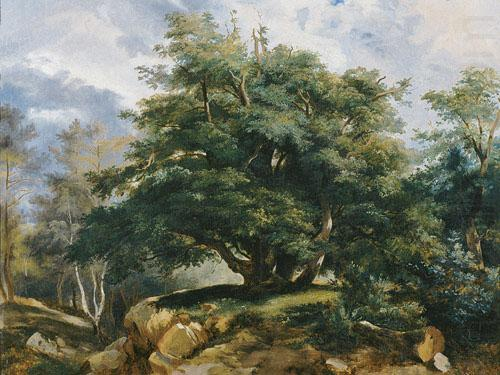Old Oak in the Forest of Fontainebleau, Jules Coignet