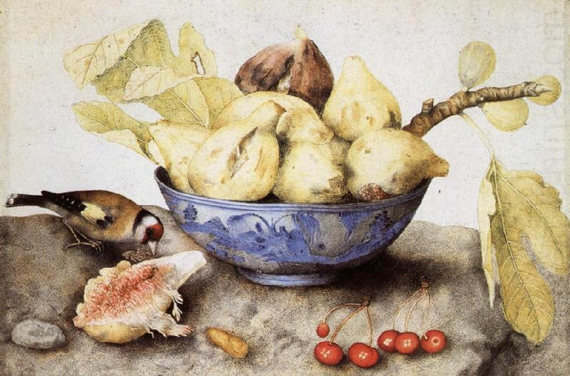 Chinese Cup with Figs,Cherries and Goldfinch, Giovanna Garzoni