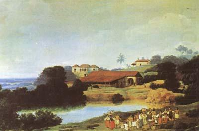 Hacienda (mk08), Frans Post